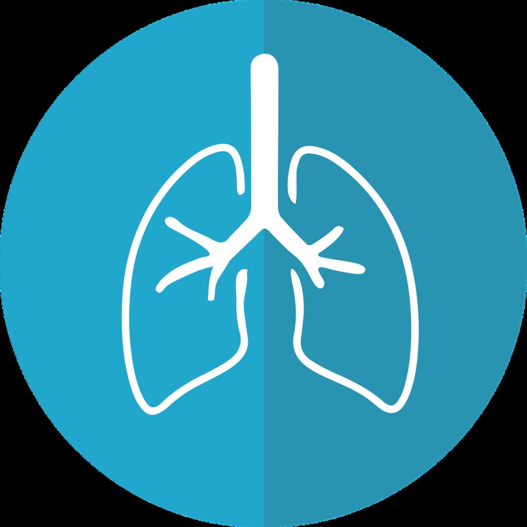 呼吸音を聴診するコツ〜看護に必要なフィジカルアセスメント〜